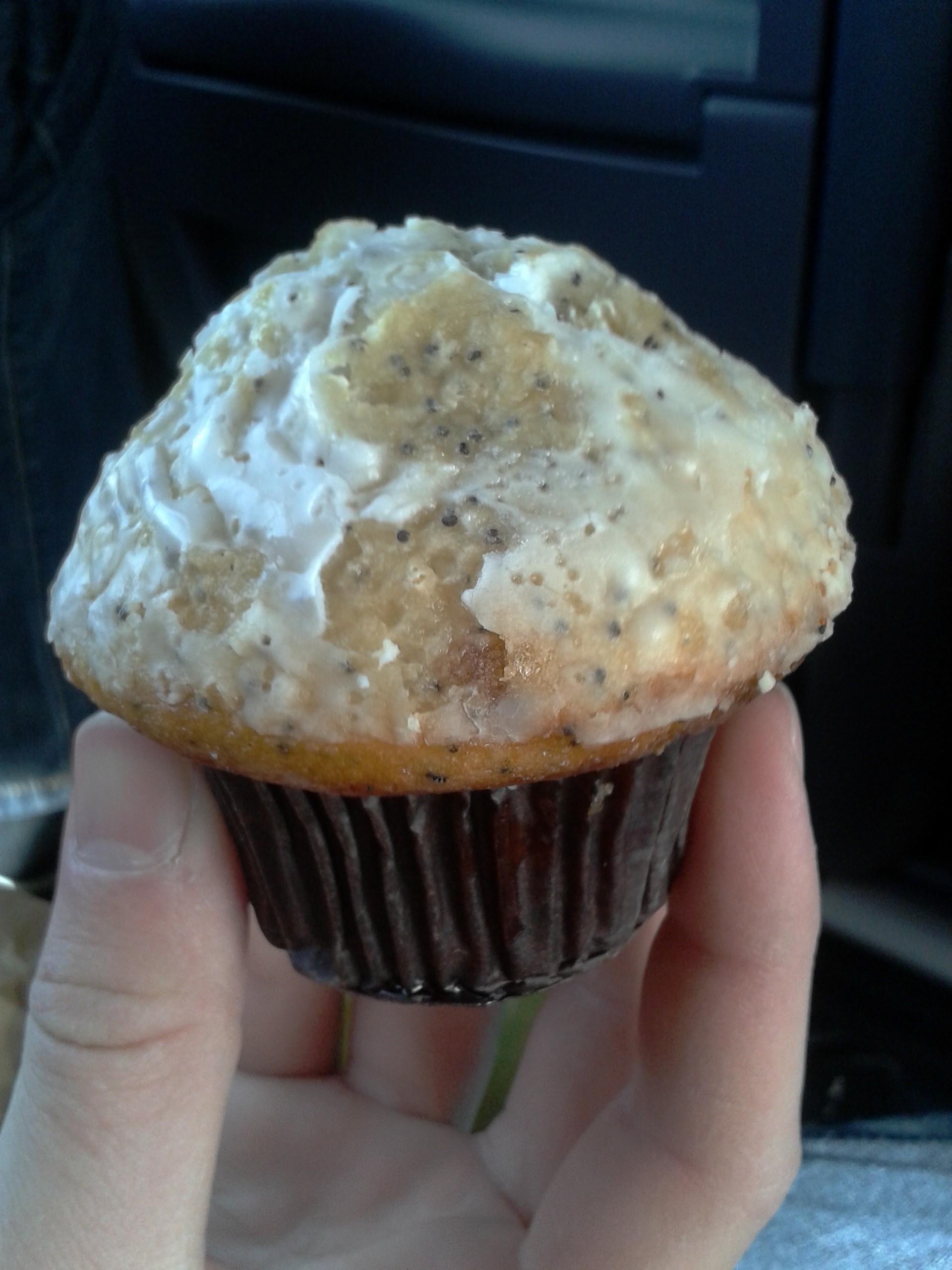 muffin, starbucks, poppy seeds, lemon