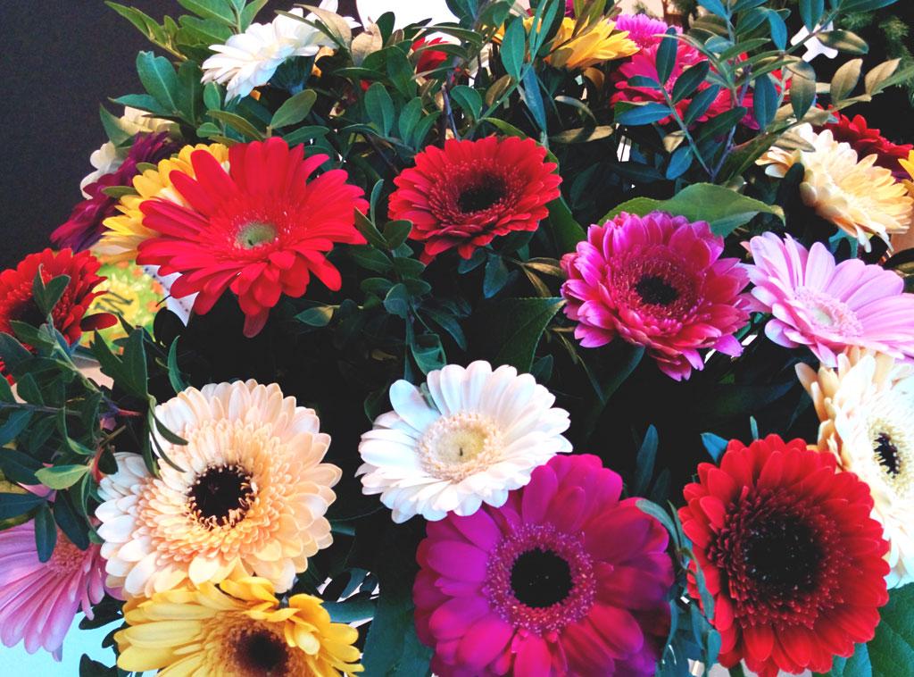 gerbera, bos bloemen, verjaardag bloemen, grote bos bloemen, gekleurde bloemen, verjaardags plog, plog januari 2015