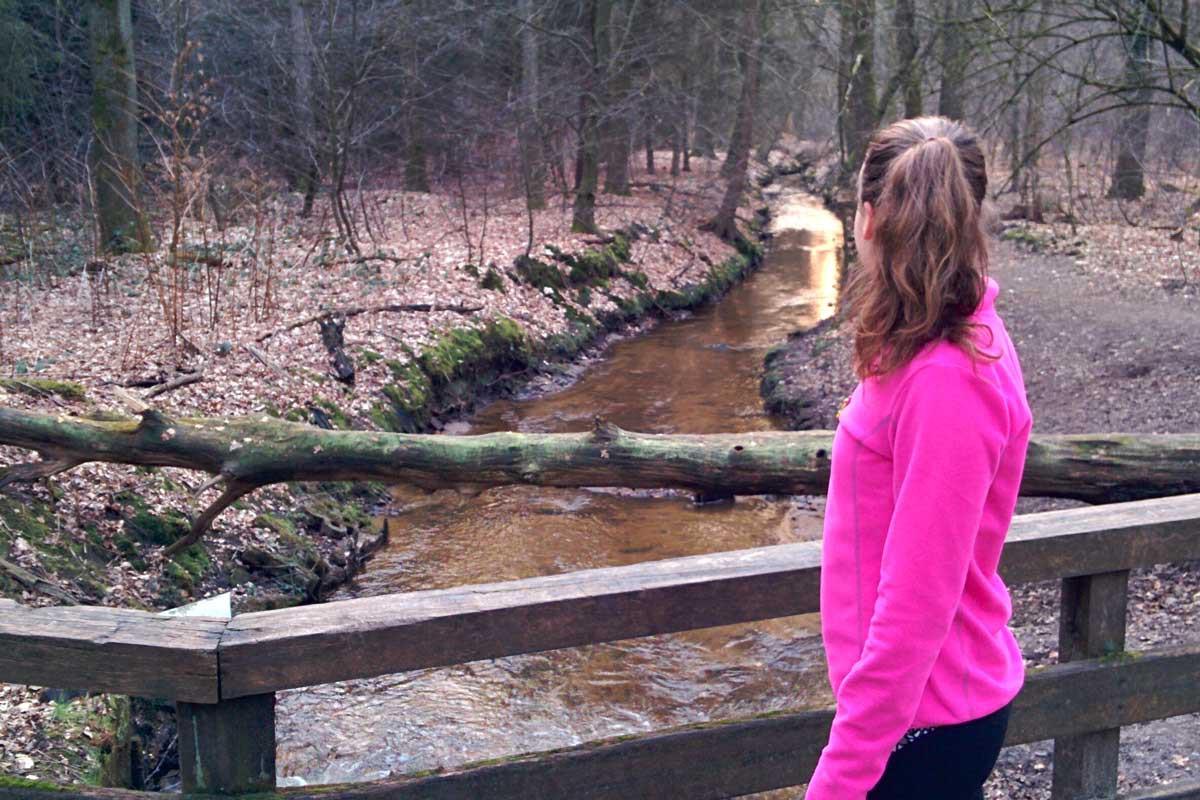 trailrunning, hardlopen in het bos, de natuur is mooi
