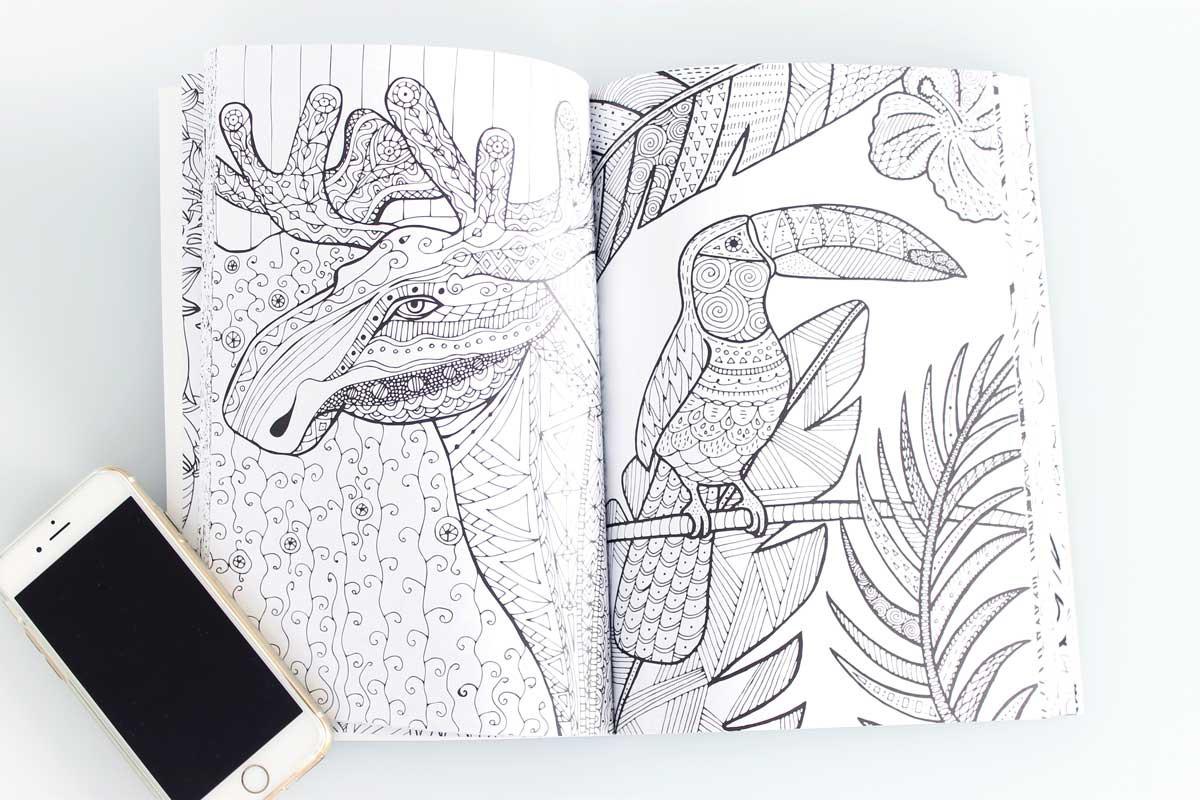 Kleurplaten Voor Volwassenen Mijn Geheime Tuin.Het Zevende Enige Echte Kleurboek Voor Volwassenen Without