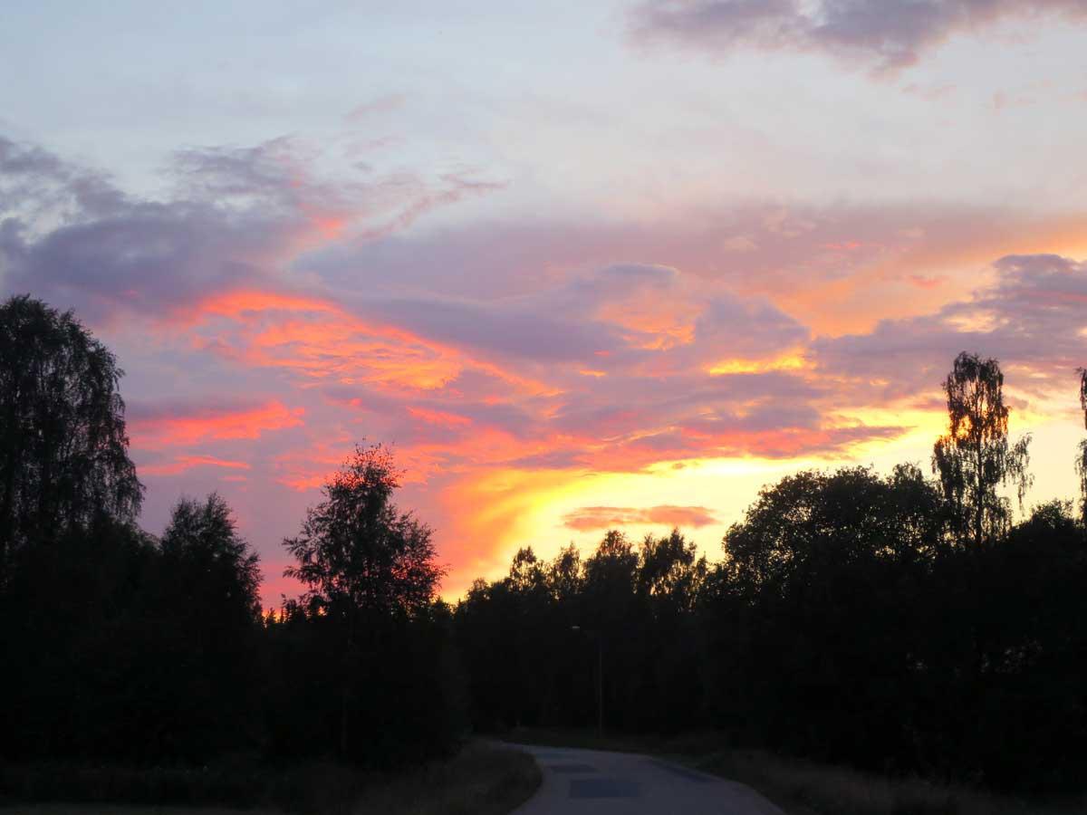 mooie zomeravond, zonsondergang, zweden, liefde, without elephants