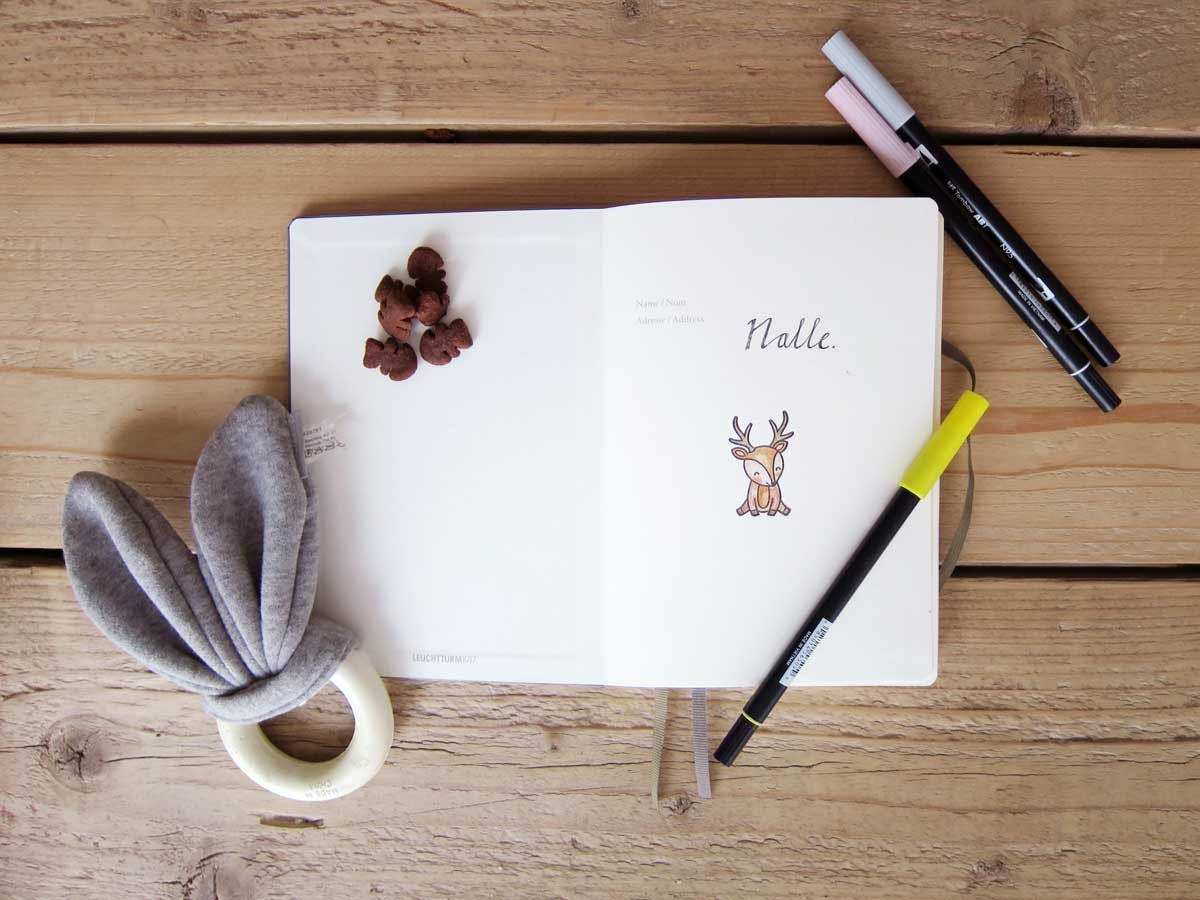 puppy bullet journal, pet journal, how to , ideas
