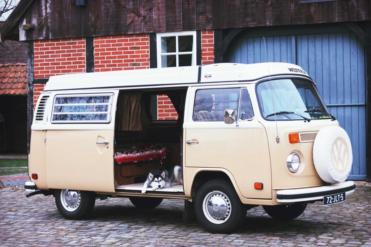 volkswagenbus, volkswagen camper huren, op vakantie met de hond in nederland, camper huren met hond